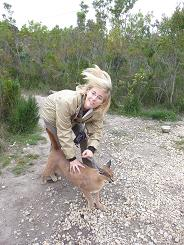 Caracal picture