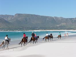 Romantic honeymoon idea horse riding