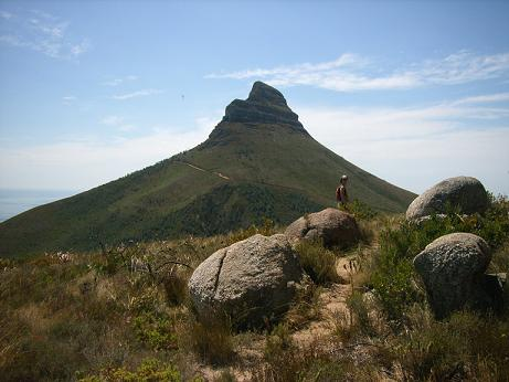 Picture of Lions Head