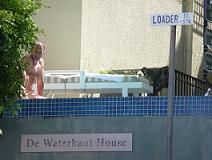 Cape Quarter roof pool on Cape Malay cottage